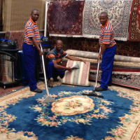 Maintenance Carpet Cleaning Panorama