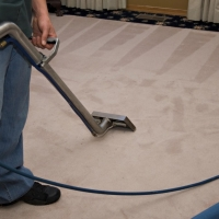 Quality Carpet Cleaner Johannesburg